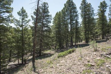Lot 498 Redhill ROAD FAIRPLAY, Colorado - Image 20