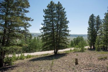 Lot 498 Redhill ROAD FAIRPLAY, Colorado - Image 5