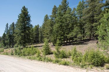 Lot 498 Redhill ROAD FAIRPLAY, Colorado - Image 8