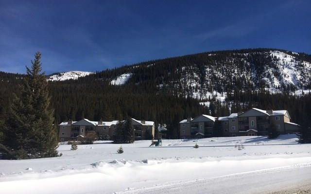 107 Peaks View COURT # 313 BRECKENRIDGE, Colorado 80424
