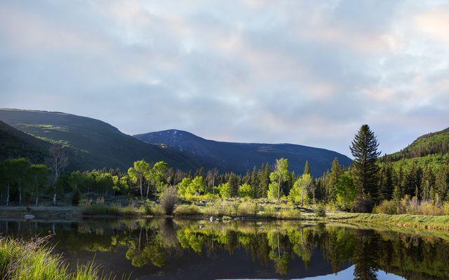 4191 E Lake Creek Road - photo 10
