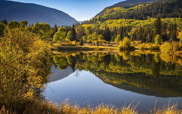 4191 E Lake Creek Road - photo 12