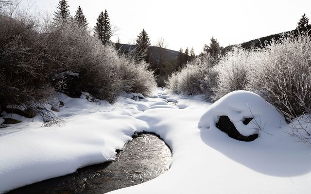 4191 E Lake Creek Road - photo 18