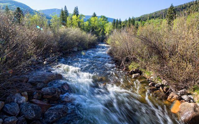 4191 E Lake Creek Road - photo 2