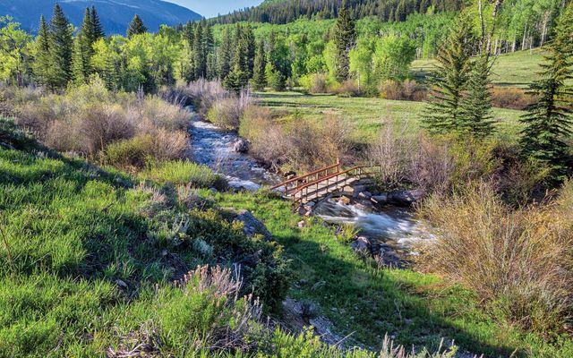 4191 E Lake Creek Road - photo 4