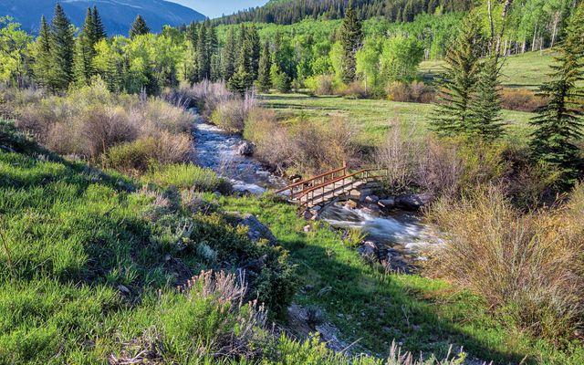 4191-East East Lake Creek Road - photo 4