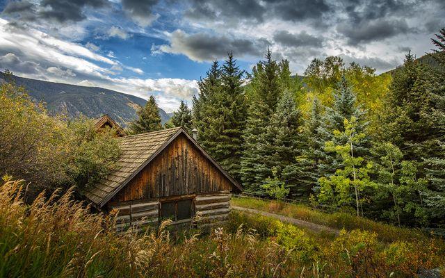 4191 E Lake Creek Road - photo 5