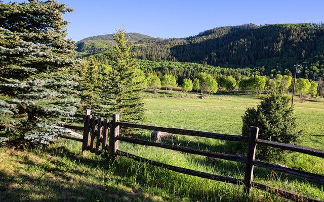 4191 E Lake Creek Road - photo 6