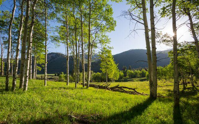 4191 E Lake Creek Road - photo 9
