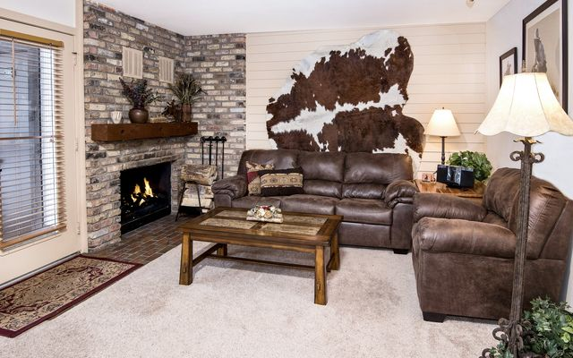 4605 Meadow Drive # 4-16 - photo 2