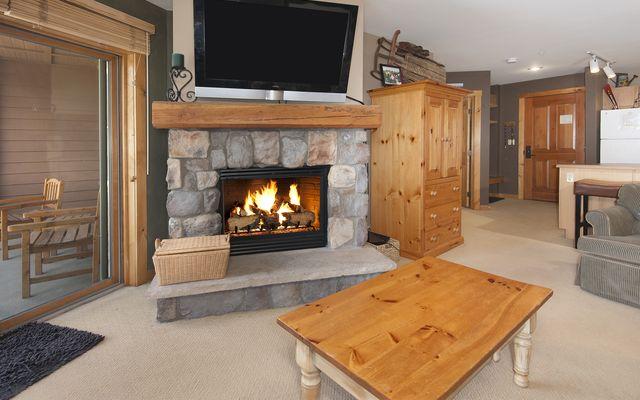 Buffalo Lodge And The Dakota Condos # 8390 - photo 2