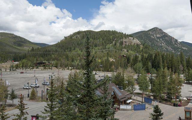 Buffalo Lodge And The Dakota Condos # 8390 - photo 20