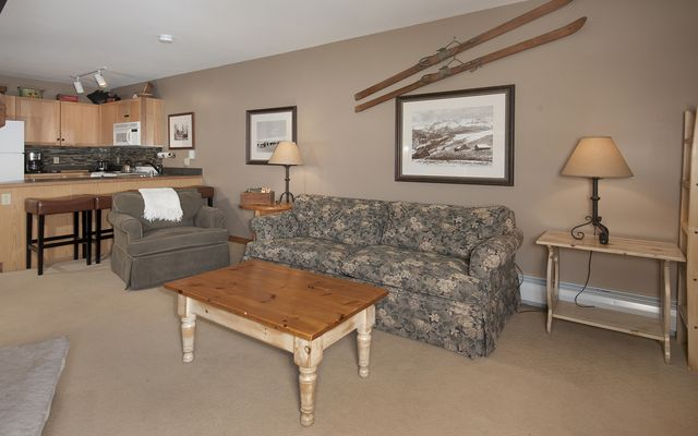 Buffalo Lodge And The Dakota Condos # 8390 - photo 3