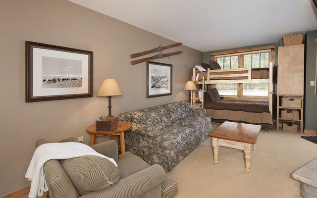 Buffalo Lodge And The Dakota Condos # 8390 - photo 4