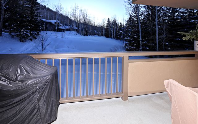 Fall Ridge Condo # 106 - photo 22
