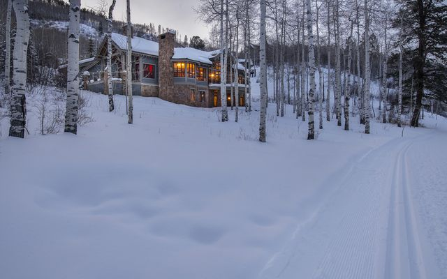 393 Forest Trail - photo 11
