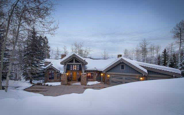 393 Forest Trail - photo 13