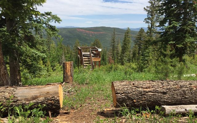 355 Granite Springs Trail Edwards, CO 81632