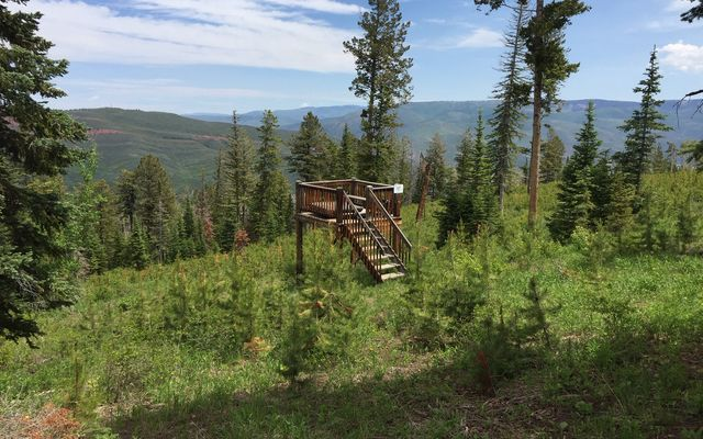 355 Granite Springs Trail - photo 1