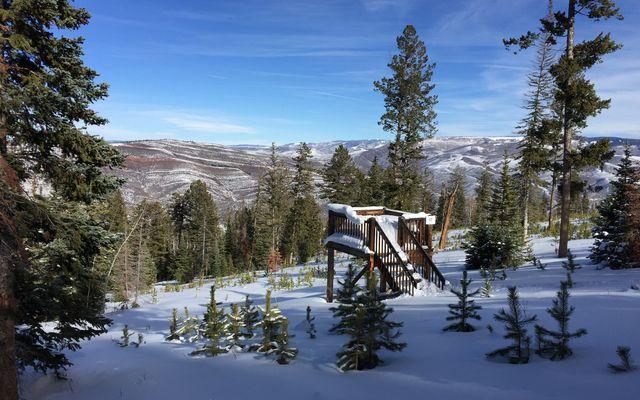 355 Granite Springs Trail - photo 12