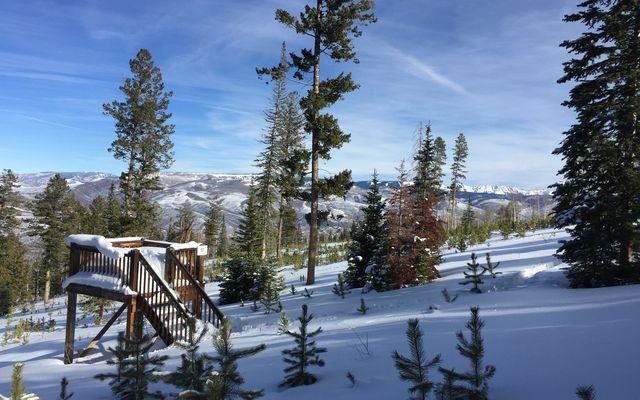 355 Granite Springs Trail - photo 13