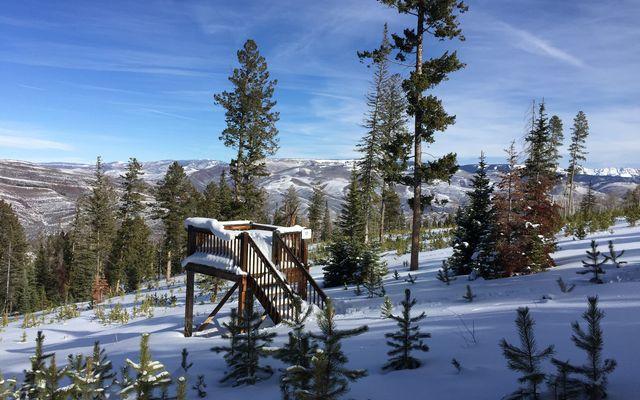 355 Granite Springs Trail - photo 14