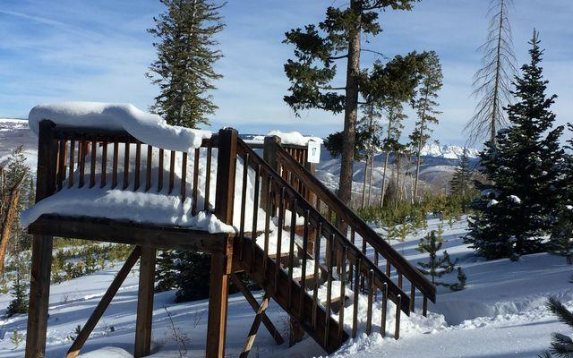 355 Granite Springs Trail - photo 15