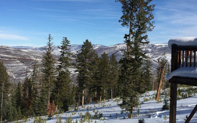 355 Granite Springs Trail - photo 16