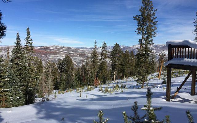 355 Granite Springs Trail - photo 17