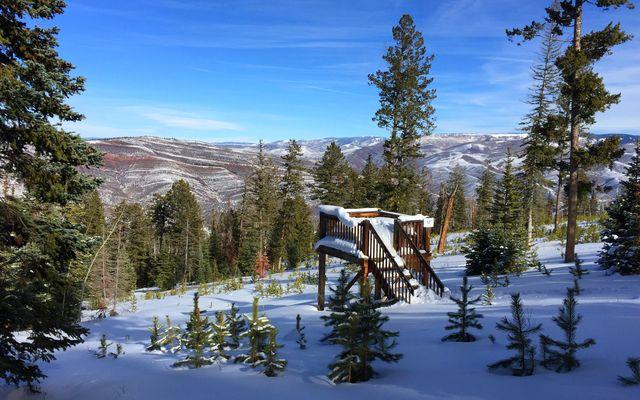 355 Granite Springs Trail - photo 19