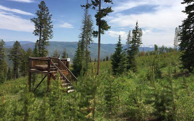 355 Granite Springs Trail - photo 2