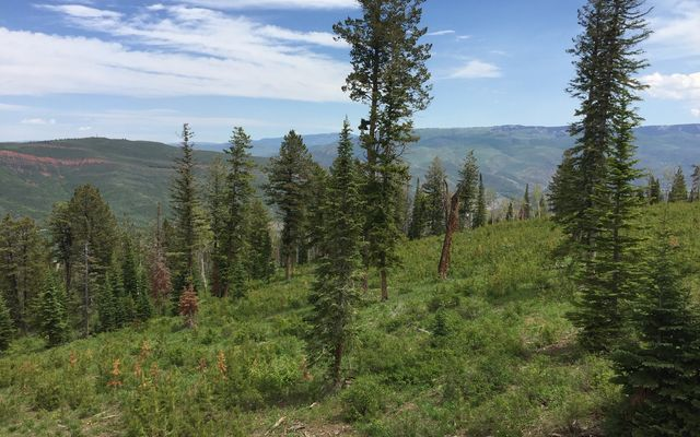 355 Granite Springs Trail - photo 22