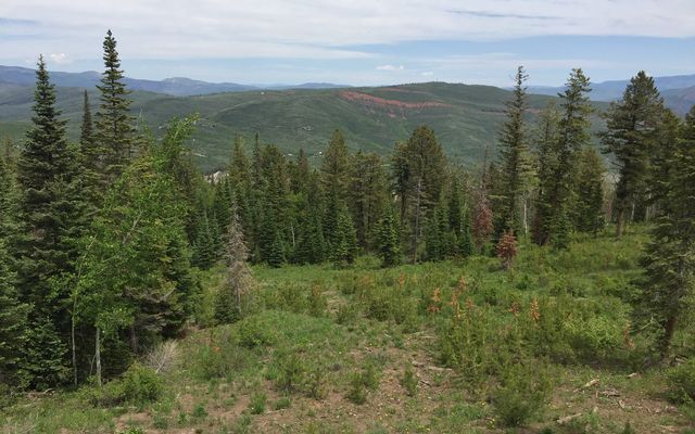 355 Granite Springs Trail - photo 23