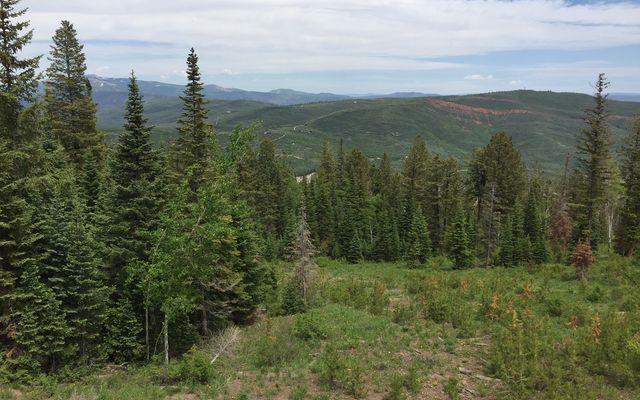 355 Granite Springs Trail - photo 24