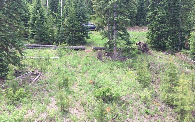 355 Granite Springs Trail - photo 25