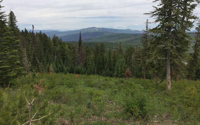355 Granite Springs Trail - photo 27