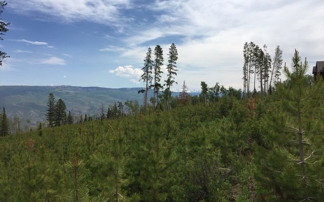 355 Granite Springs Trail - photo 28