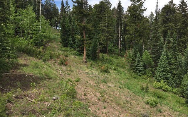 355 Granite Springs Trail - photo 3
