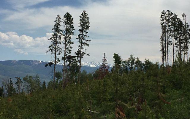 355 Granite Springs Trail - photo 30