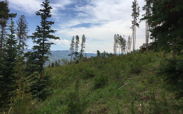 355 Granite Springs Trail - photo 31