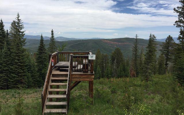 355 Granite Springs Trail - photo 32