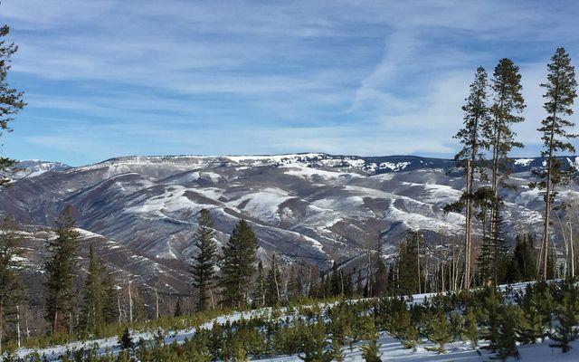 355 Granite Springs Trail - photo 4
