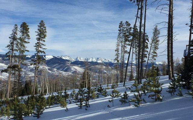 355 Granite Springs Trail - photo 6