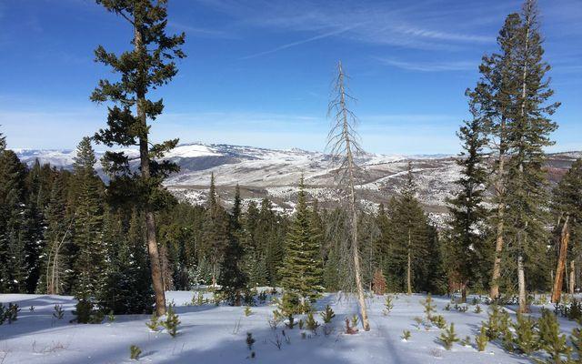 355 Granite Springs Trail - photo 7