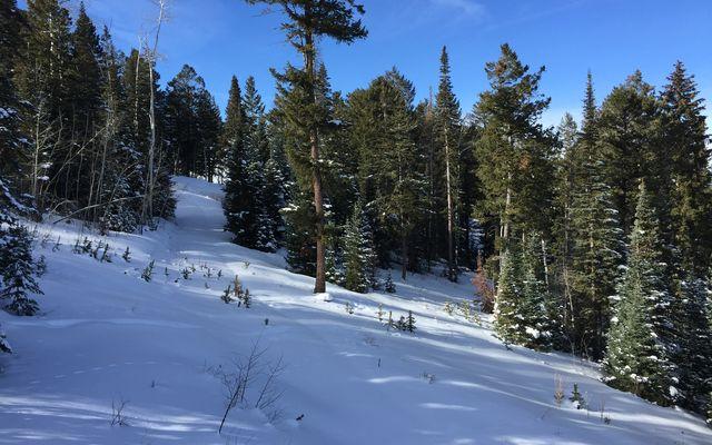 355 Granite Springs Trail - photo 8