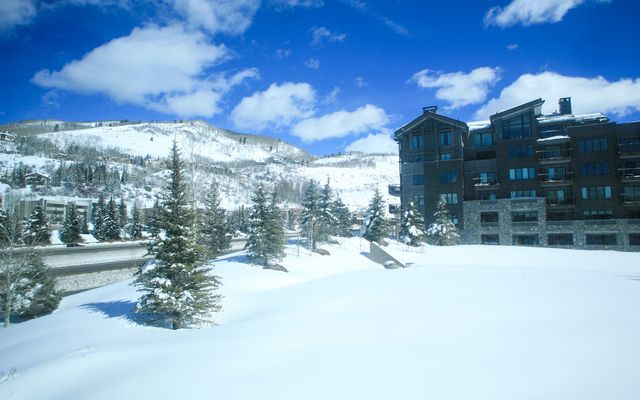 Vail Spa Condominiums # 302 - photo 11
