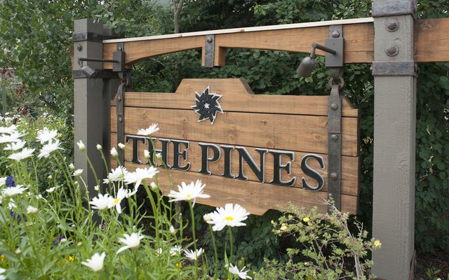 Pines At Keystone Condo # 2065 - photo 20