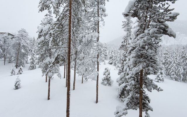 Pines At Keystone Condo # 2065 - photo 21