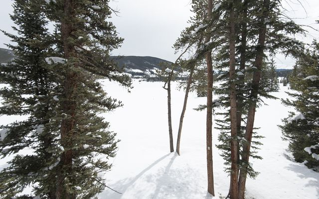 32 Spruce Circle - photo 45
