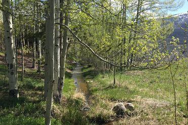 100 Hunters Knob ROAD SILVERTHORNE, Colorado 80498 - Image 1